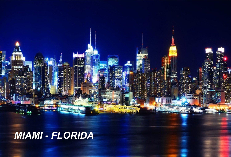 Florida USA United States Fridge Refrigerator Magnets (1 Piece, Style: Miami #P1)