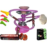 """2 Hose Hookah Neon, Two Styles to Choose from 12"""" Height, Cute Shape Comes with 10 Instant Charcoal, 5 Mouth Tips, 25…"""