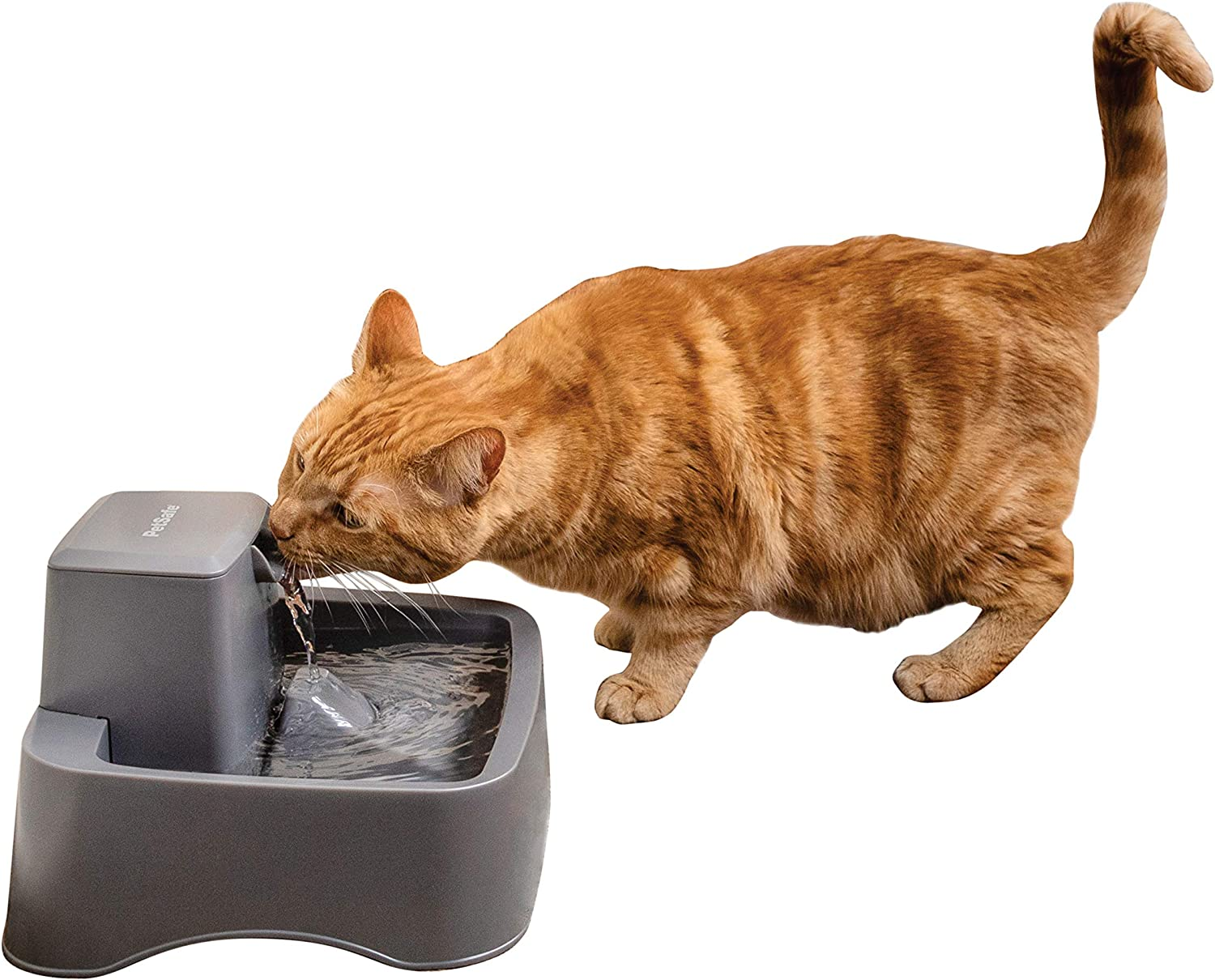 PetSafe Drinkwell 1/2, 1, or 2 Gallon Pet Fountains, Best for Cats, Dogs and Multiple Pets, Adjustable Stream, Fresh Water Dispenser, Easy to Clean Design, 2 Filters Included
