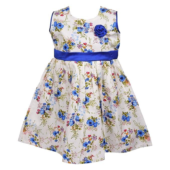 8b590da4d689 Wish Karo Baby Girls Platinum Cotton Frock Dress DN ctn104blu-12-18 mths