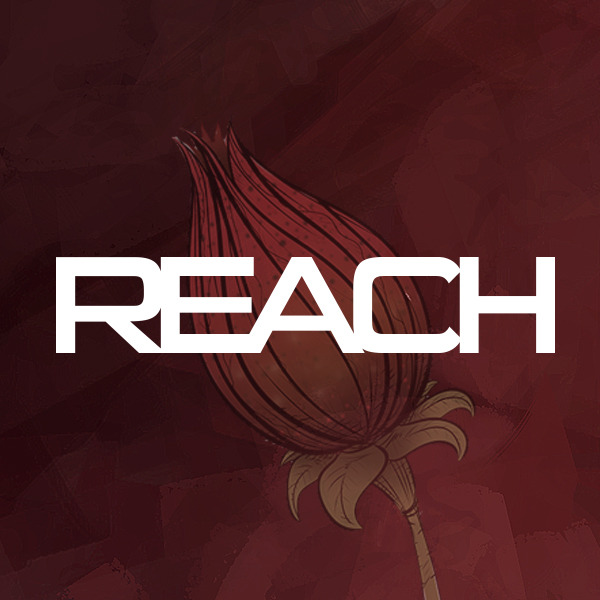 Book cover from REACH  (Issues) (3 Book Series) by Joe Pezzula