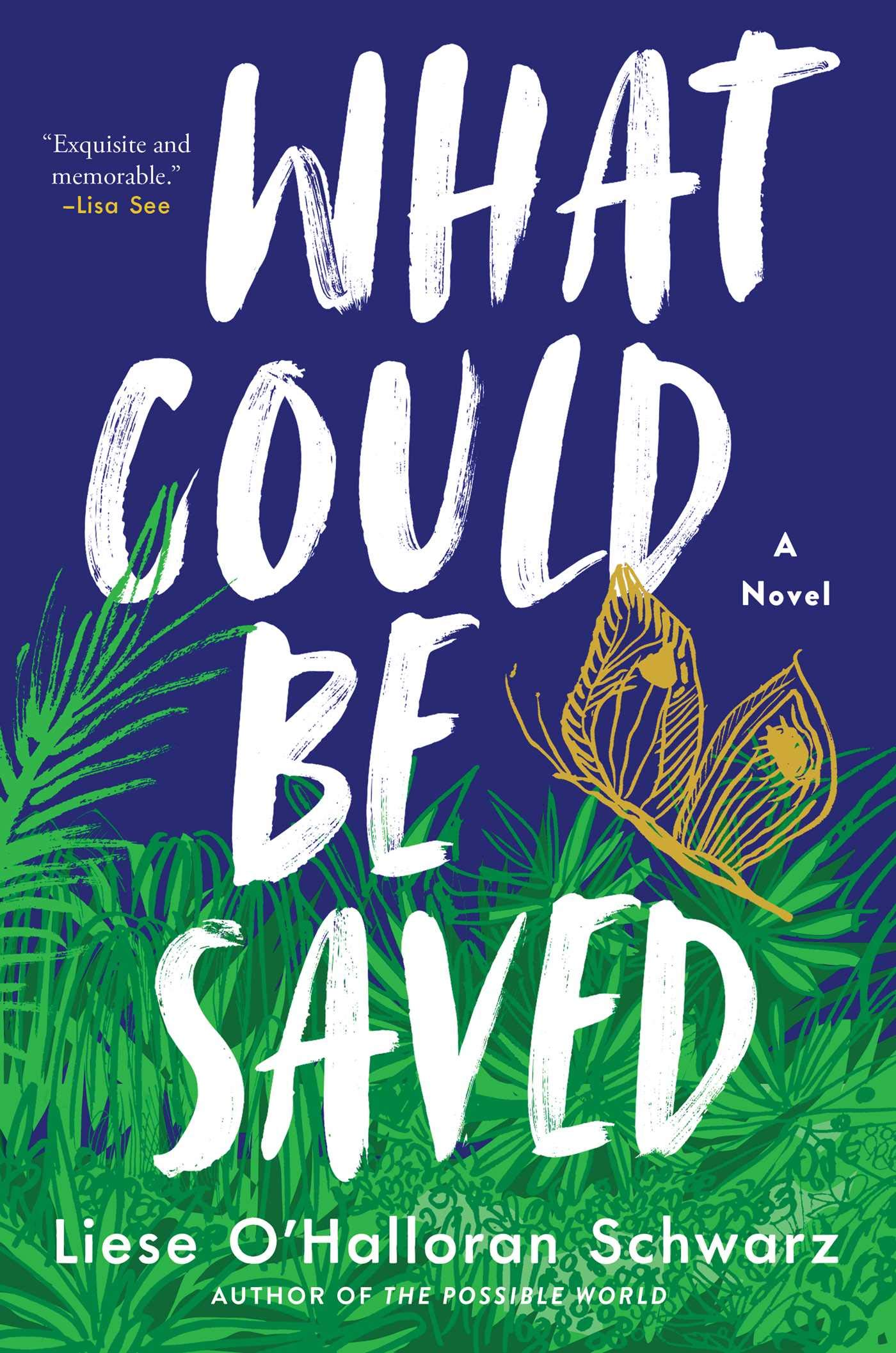 What Could Be Saved: A Novel: Schwarz, Liese O'Halloran: 9781982150617:  Amazon.com: Books