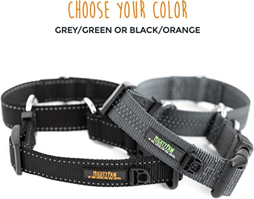 Mighty Paw Martingale Nylon Training Collar. Our Trainer Approved Limited Slip Collar. Modified Cinch Collar