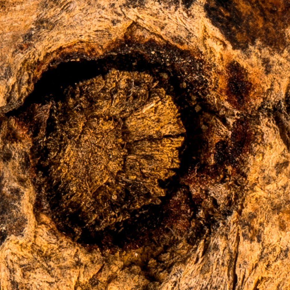 decomonkey Fototapete Holz 400x280 cm XXL Design Tapete Fototapeten Vlies Tapeten Vliestapete Wandtapete moderne Wand Schlafzimmer Wohnzimmer FOB0169a84XL