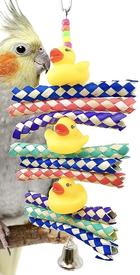 Bonka Bird Toys 1970 - Trampa de Pato para pájaros, Jaula de ...