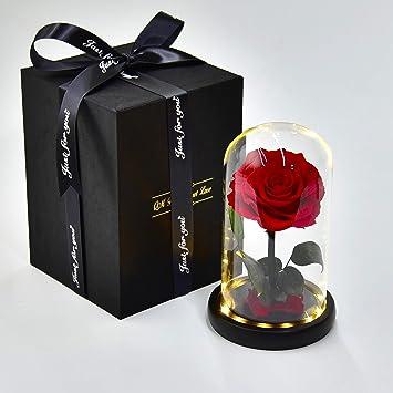 Red 5.1inch Full House Fait Main Fleur conserv/ée Rose /éternelle avec lumi/ères LED et Coffret Cadeau