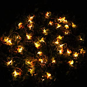 Solar String Lights Outdoor 30 LEDs, Bee Lights, Waterproof, Warm White, 21 Feet, 2 Modes