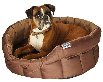 Lifemax Cama Ovalada, pequeña y Muy Resistente para Perros: Amazon.es: Productos para mascotas