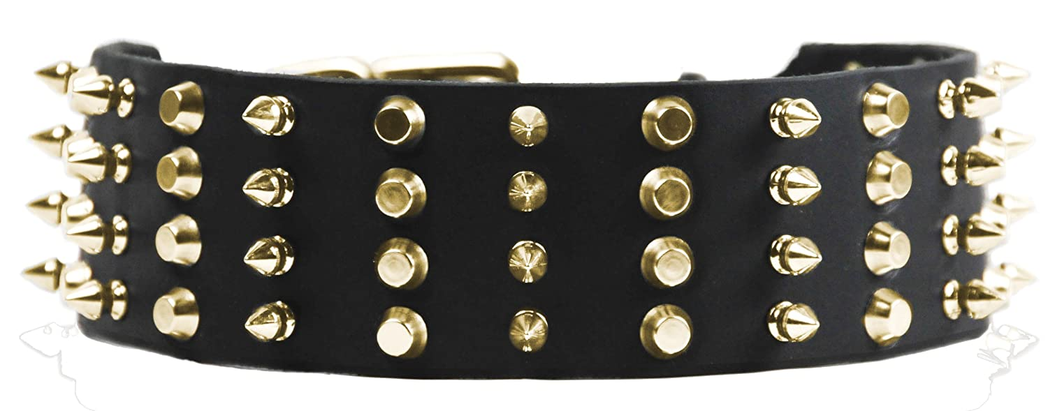 Dean and Tyler 4 ROW COMBO , Extra Wide Dog Collar with Brass Spikes and Studs Black Size 20-Inch by 2-1 4-Inch Fits Neck 18-Inch to 22-Inch