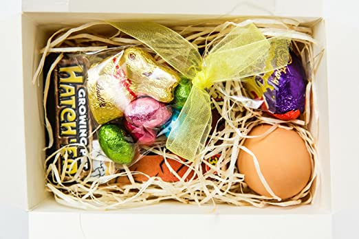 Easter eggs easter gifts for children includes chocolate easter eggs easter gifts for children includes chocolate easter eggs hatching dinosaur egg toy easter bunny creme egg and bouncy egg order these negle Images