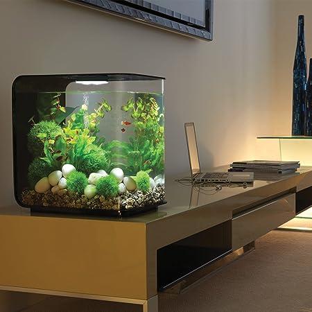 Amazon.com : biOrb FLOW 30 Aquarium with LED Light - 8 Gallon, Black ...
