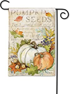 BreezeArt Studio M Pumpkin Seed Sack Fall/Winter Decorative Garden Flag – Premium Quality, 12.5 x 18 Inches