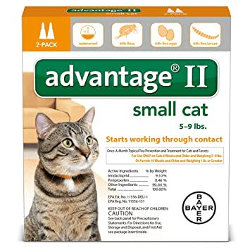 Advantage for dogs united states small