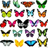 40 Pieces Butterfly Window Clings Anti-Collision Decals Non Adhesive Static Vinyl Cling UV Resistant Butterfly Stickers for Glass Windows and Doors to Alert Birds Prevent Bird Strikes on Window Glass