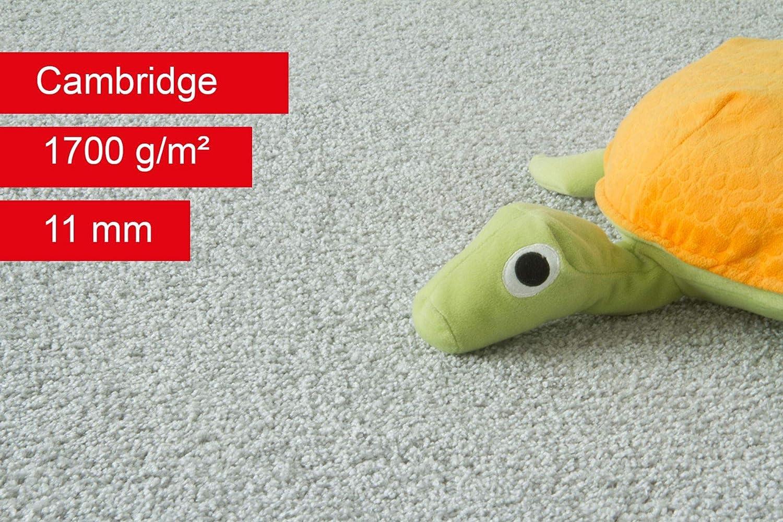 Steffensmeier Teppichboden Cambridge Meterware Auslegware f/ür Kinderzimmer Wohnzimmer Schlafzimmer Grau Gr/ö/ße: 100x50 cm