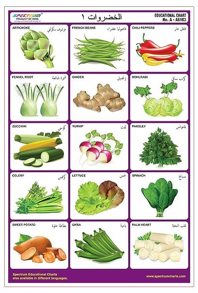 Amazon Com Spectrum Arabic Language Vegetables 1 Pre Primary Kids