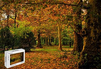 Amazon.com: 300 piezas Puzzle – España Madrid Campo Autumn ...