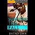 Surviving the Fall (Hidden Truths Book 4)
