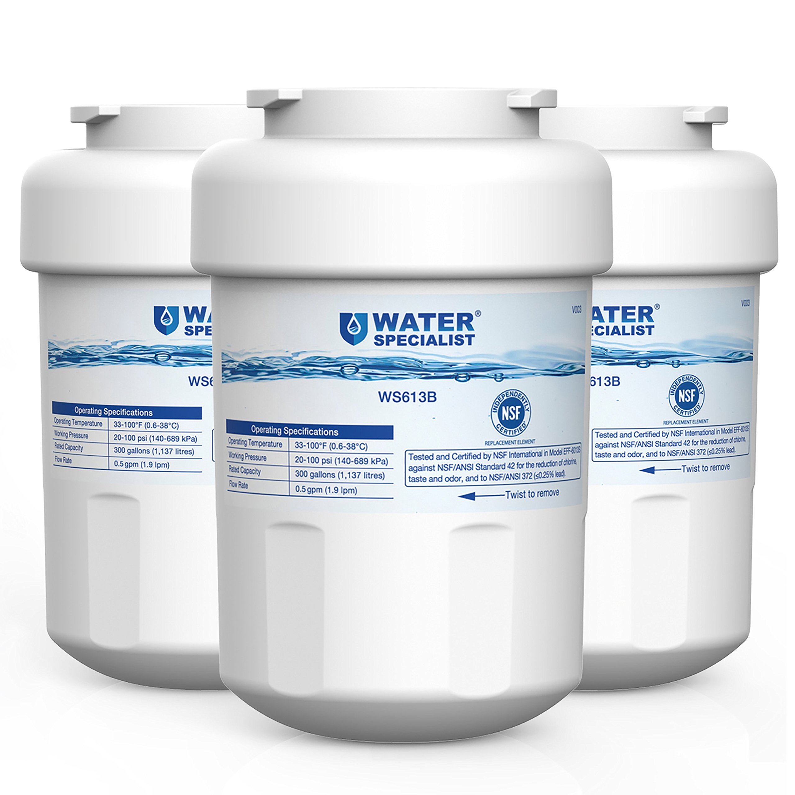 Waterspecialist MWF Replacement Refrigerator Water Filter, Compatible with GE MWF, SmartWater, MWFP, MWFA, GWF, HDX FMG-1, WFC1201, GSE25GSHECSS, PC75009, RWF1060, 197D6321P006, 3 Pack