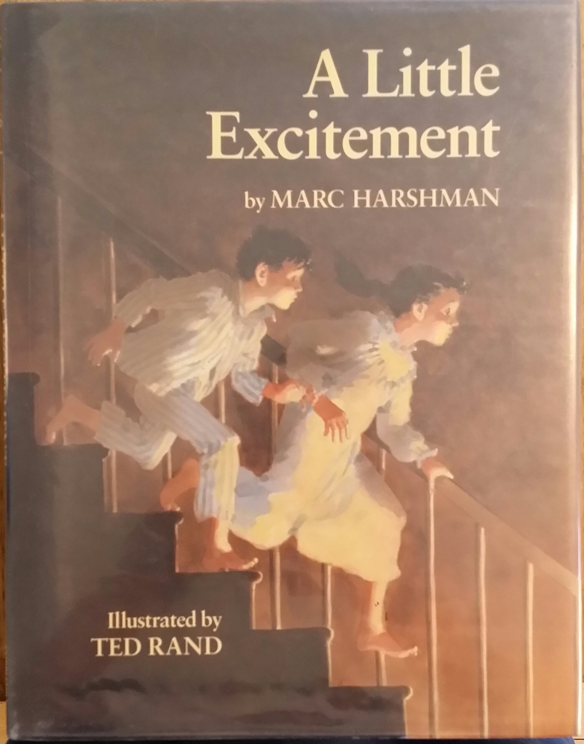 A Little Excitement ebook