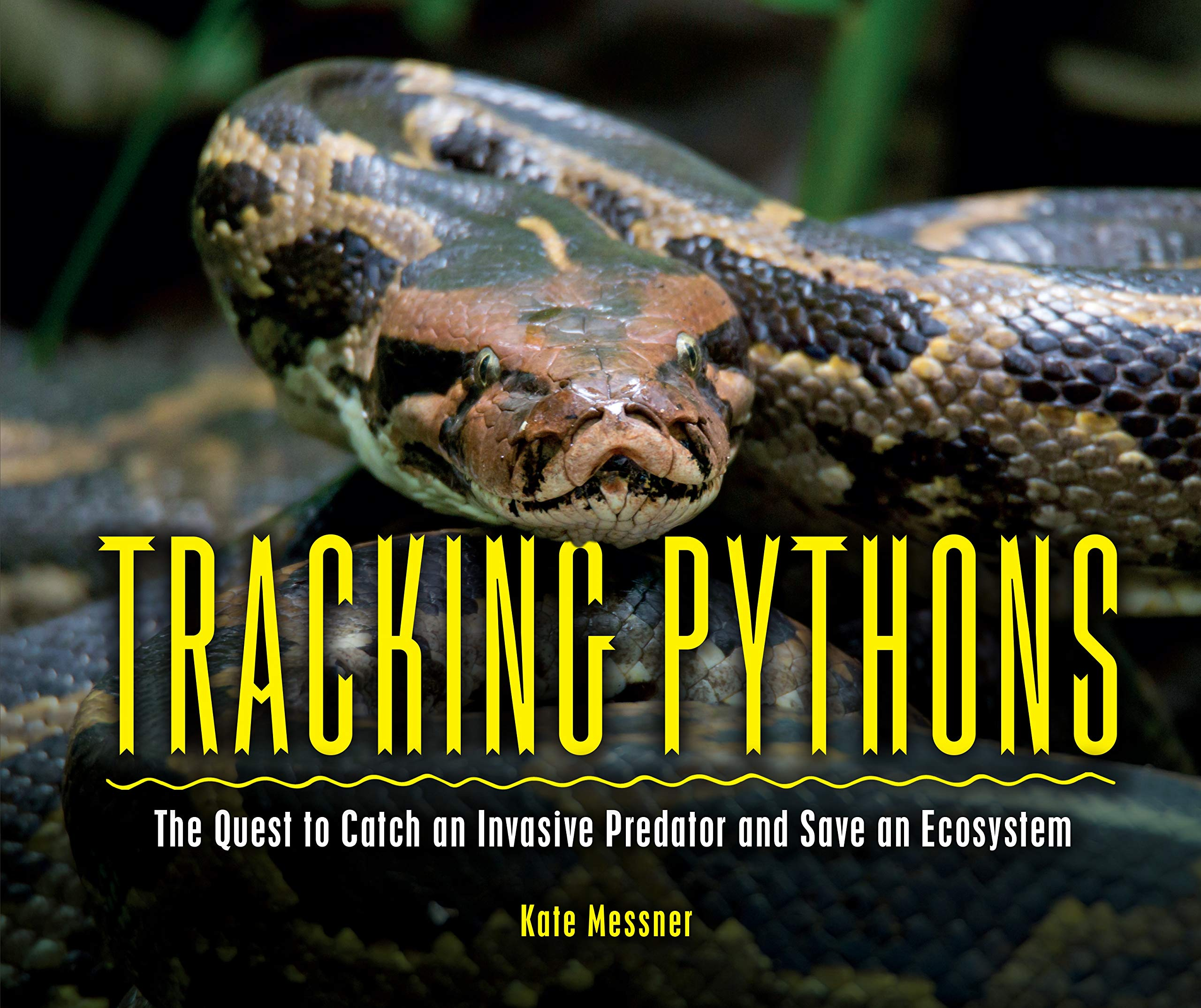 Image result for tracking pythons kate messner