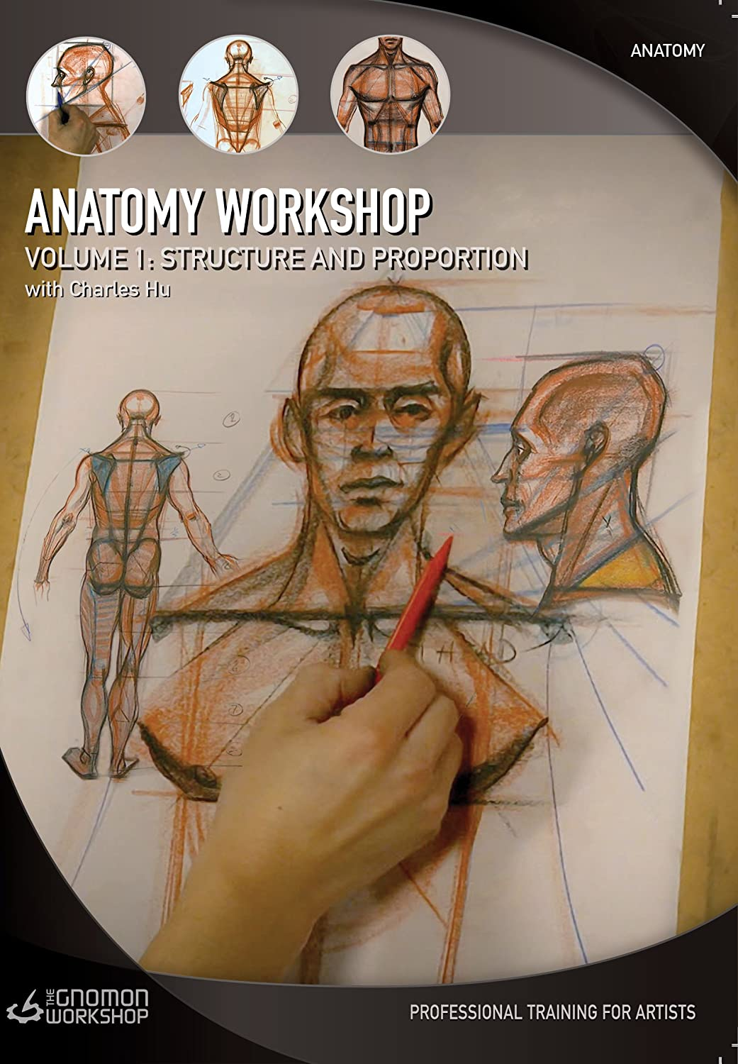 Amazon.com: Anatomy Workshop: Volume One - Structure and Proportion ...