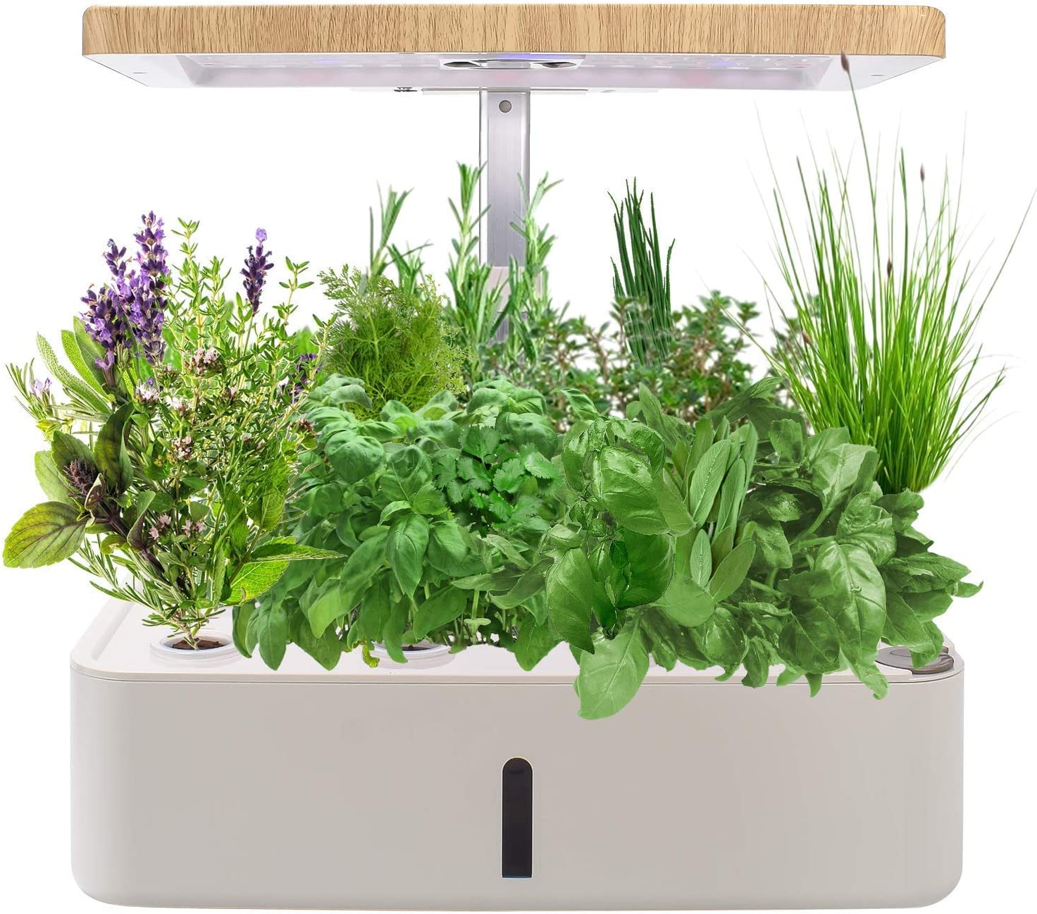 KORAM Hydroponics Growing System Kit for Indoor Gardening, Smart LED Plant Grow Light Germination Kits for Home Kitchen Planting 12 Pots (Nutrient & Seeds Not Included)