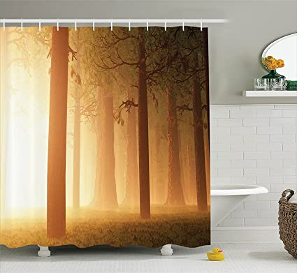 Zhengyuantong Magic Home Decor Shower Curtain Set By Foggy Mist Hazy Forest With Sun Beams