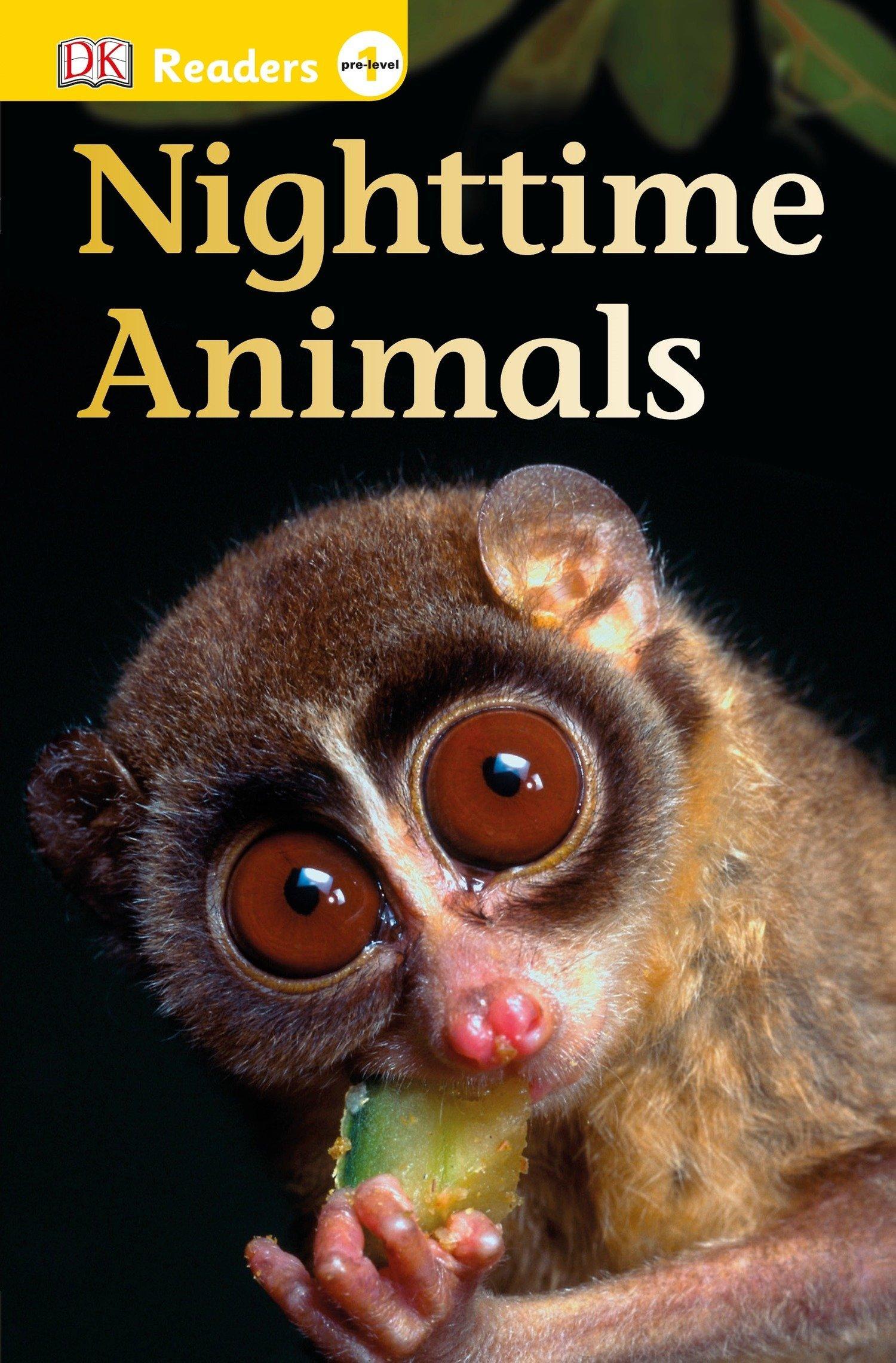 DK Readers L0: Nighttime Animals PDF