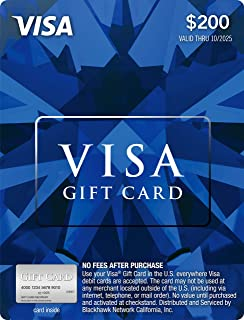 Amazon.com: $100 Visa Gift Card (plus $5.95 Purchase Fee ...