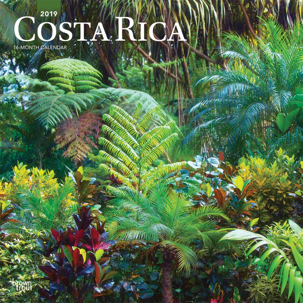 Costa Rica 2019 12 x 12 Inch Monthly Square Wall Calendar, Central America Caribbean Pacific Scenic Travel