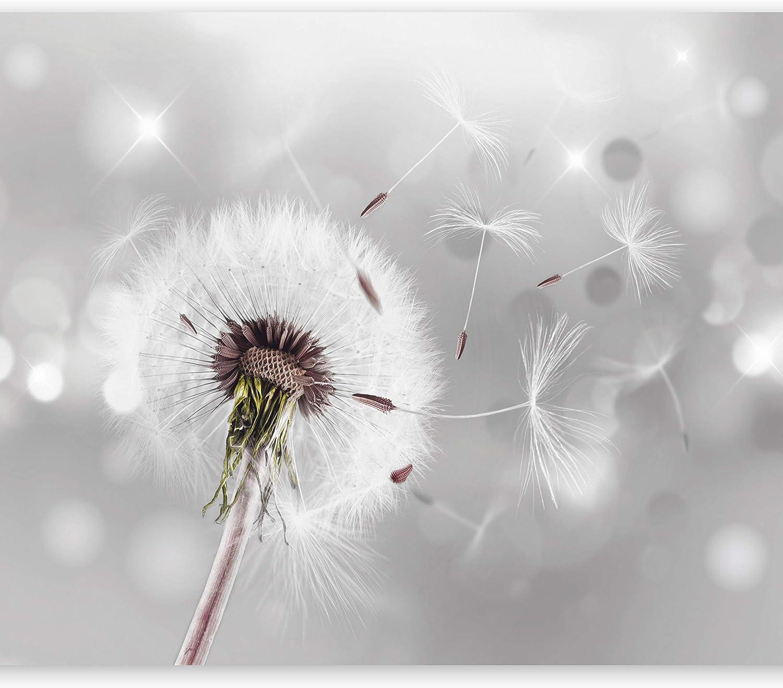 Fotomural 350x245 cm - 3 tres colores a elegir - Papel tejido-no tejido. Fotomurales - Papel pintado - Pusteblume Blumen Natur b-C-0072-a-b
