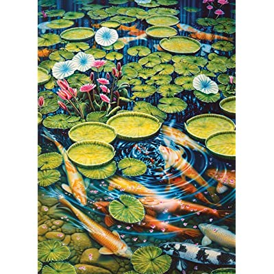 Koi Pond: Toys & Games