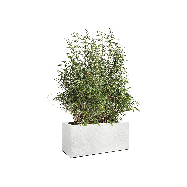 Elho 1419013915000 Flower Pot Vivo Lunga con Ruote 90 cm, Bianco, 90 x 20 x 20 cm