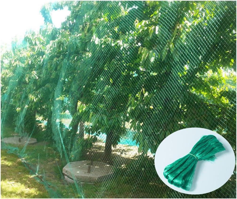 YHmall Red para Pájaros, 4m x 10m Red para Estanque Multiusos Malla de Protección de PE para Frutas, Plantas, Verduras, Jardín (Verde, 1,5x1,5 cm Agujeros)