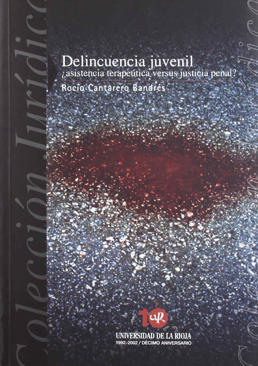 Delincuencia juvenil: ¿Asistencia terapeútica versus justicia penal? Colección Jurídica: Amazon.es: Rocío Cantarero Bandrés: Libros