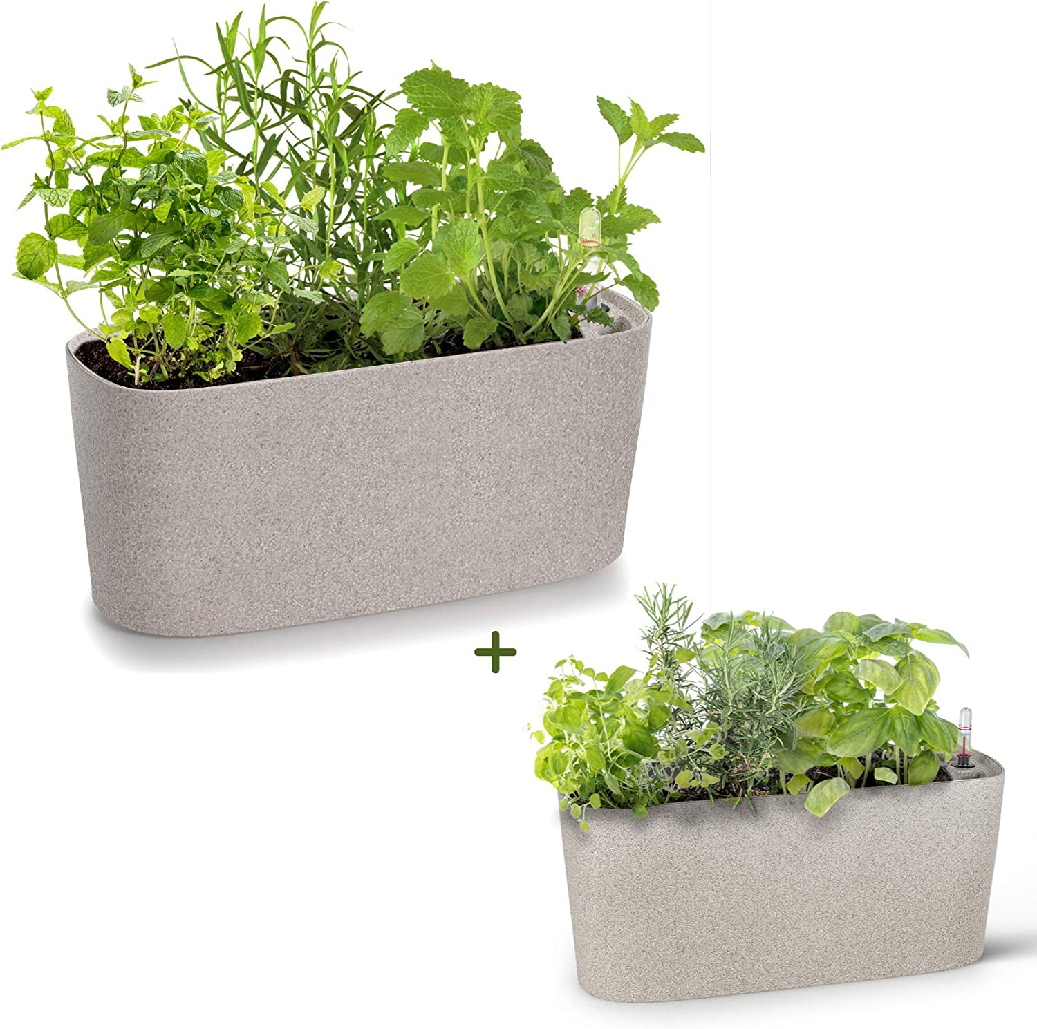 Large and Small Self Watering Planters Bundle | Windowsill Rectangular Herb Garden Pots | Plastic Planter Pots for Herbs, Greens, Flowers, House Plants and Succulents | Indoor/Outdoor Flowerpots