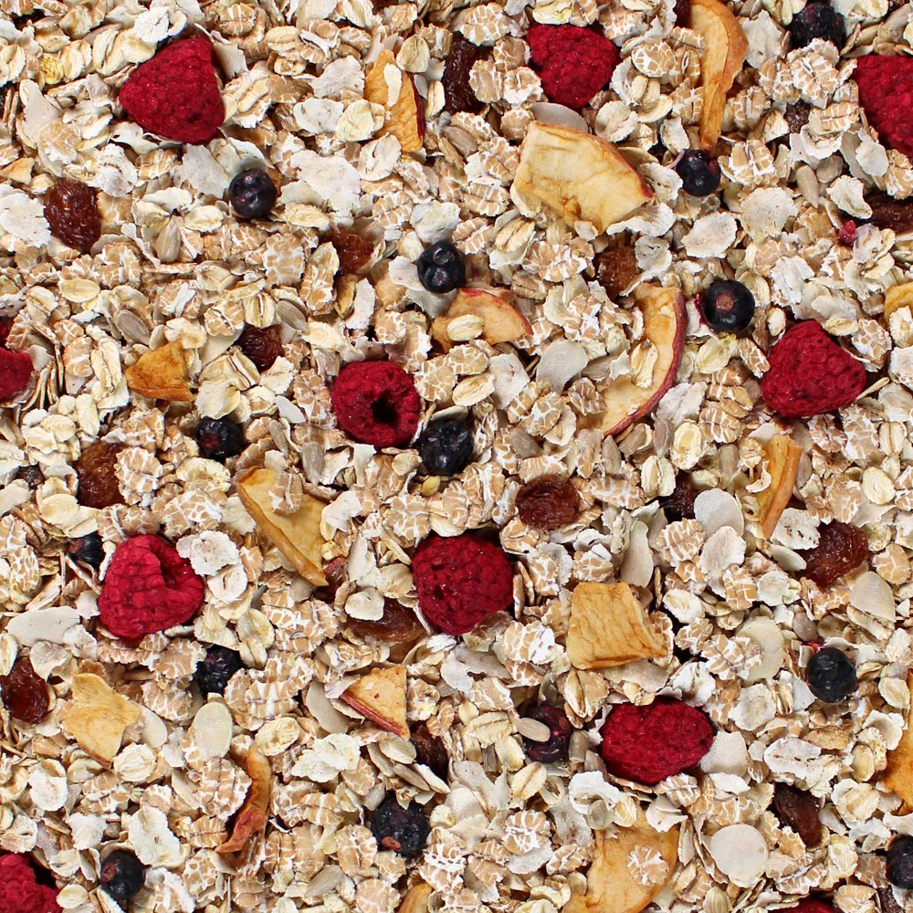 Amazon.com: Seitenbacher Organic Muesli Raspberry Blackberry Natural Cereal, 13.2 Ounce: Breakfast Cereals