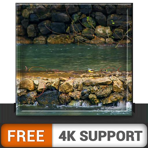 cascada gratuita HD: disfruta del hermoso paisaje en tu televisor HDR 4K, TV 8K y dispositivos de fuego como fondo de pantalla, decoración para las vacaciones de Navidad, tema de mediación y