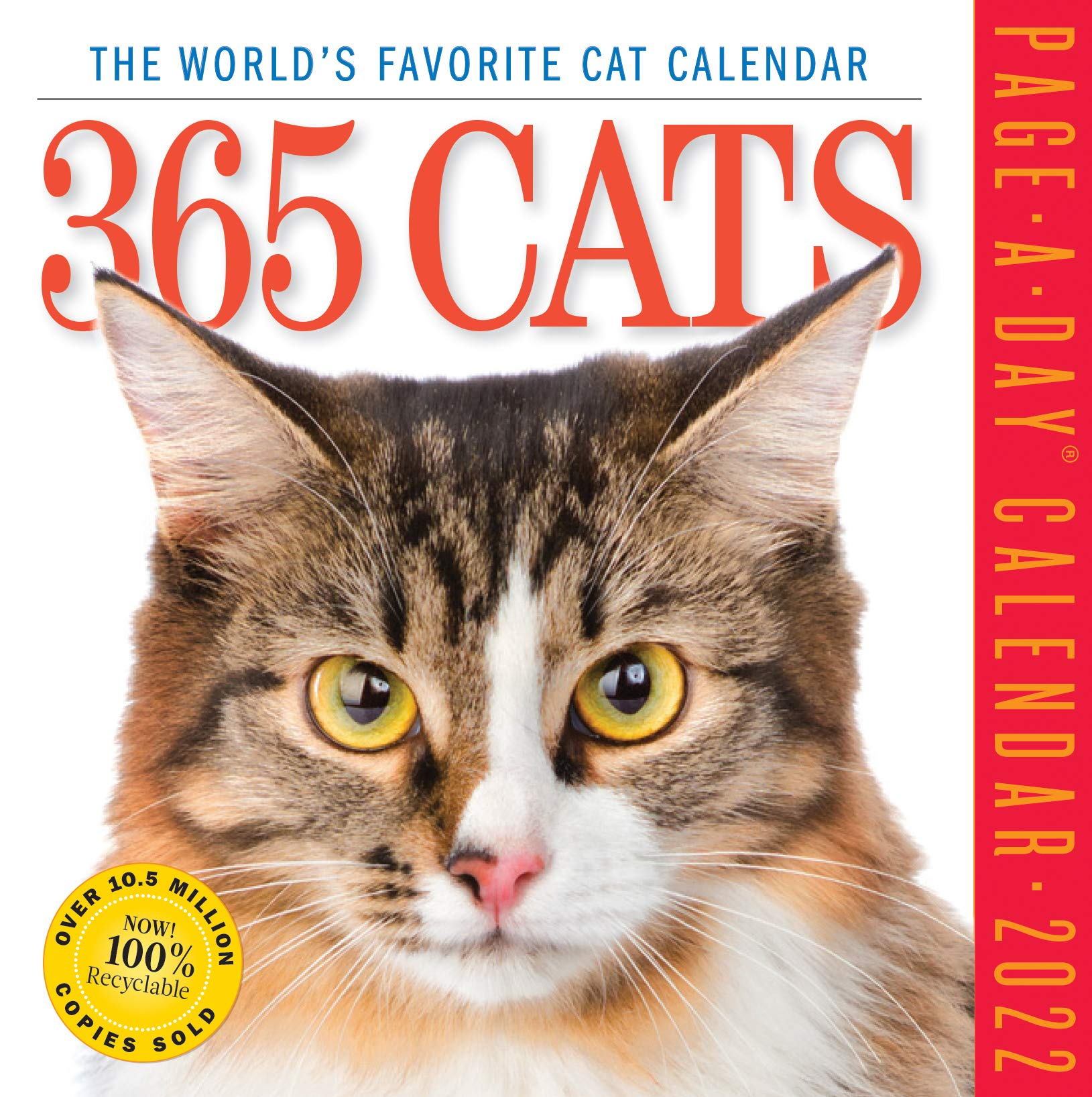Cat Calendar 2022.Buy 365 Cats Page A Day Calendar 2022 Book Online At Low Prices In India 365 Cats Page A Day Calendar 2022 Reviews Ratings Amazon In
