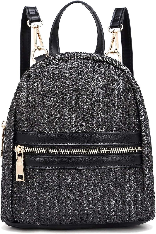 HEARTY TRENDY Outdoor Festival Fashion Mini Straw Woven Backpack Crossbody Bag