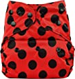 Bumberry Reusable Diaper Cover and 1 Natural Bamboo Cotton Insert (Lady Bug) (Multicolor)