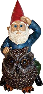 Garrold Gnome on an Owl by Michael Carr Designs - Outdoor Gnome and Owl Figurine for gardens, patios and lawns (80047)