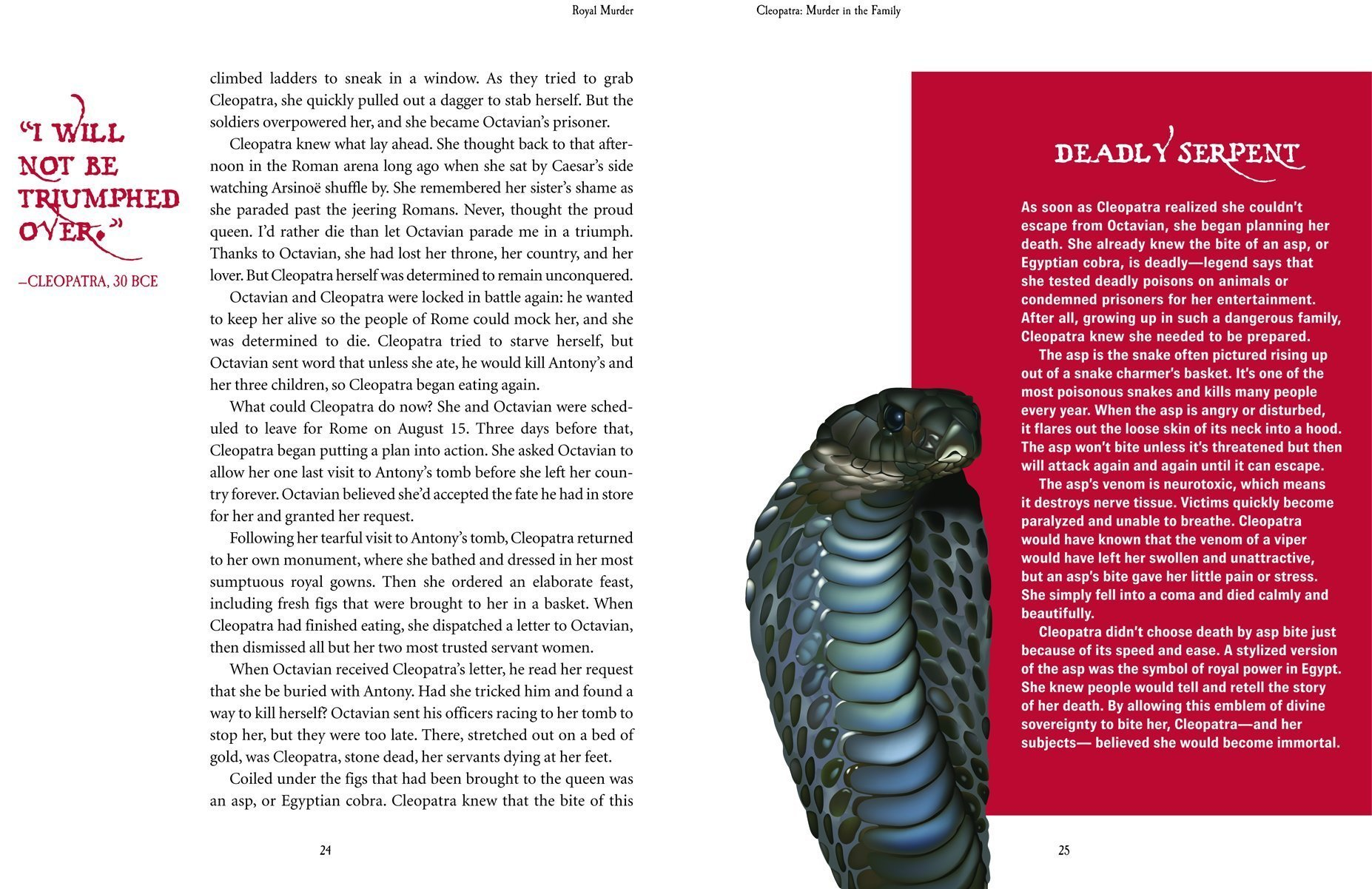 Royal Murder: The Deadly Intrigue of Ten Sovereigns by Brand: Annick Press (Image #2)