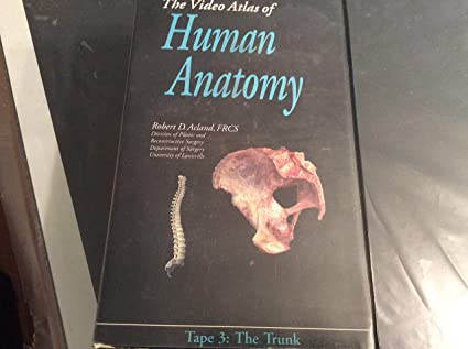 Acland\'s Video Atlas of Human Anatomy 3: The Trunk [VHS]: Robert D ...