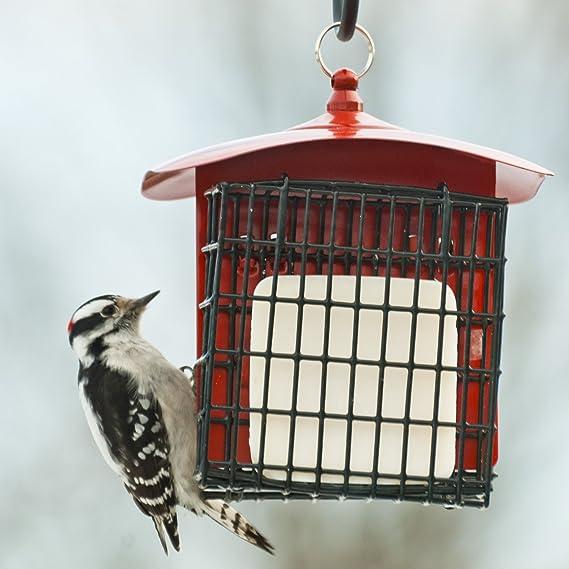 Dollhouse Miniature Replica Bird Food Hanging Suet Feeder CAR1468