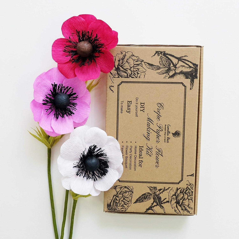 Amazon Crepe Paper Flowers Kit Paper Crafts Kit Paper Flowers