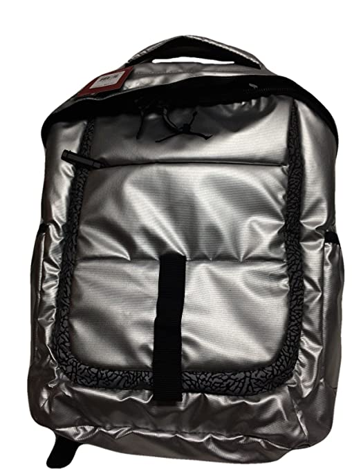 f9c44a853d4d Amazon.com  Nike Air Jordan Silver Laptop Backpack Bag for Men ...
