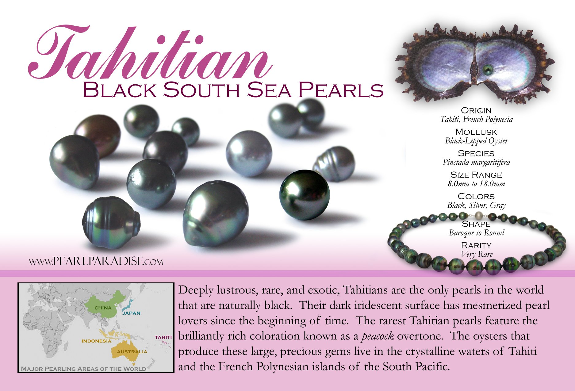 14k Tahitian Cultured Pearl Pendant, Top Gem Quality Black South Sea, 16 inch chain ( 9.0-10.0 mm, White Gold)