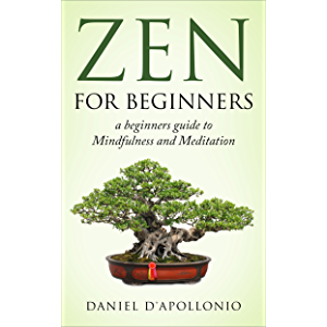 Zen: Zen For Beginners a beginners guide to Mindfulness and Meditation methods to relieve anxiety (meditation, zen…
